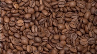 Coffee prices on the rise, San Diego shops feeling impacts