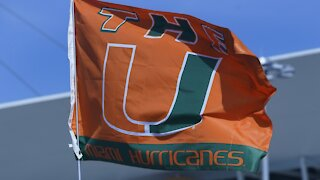 Falling Cat Saved At Miami College Football Game