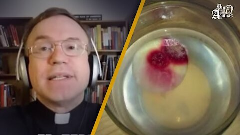 Eucharistic Miracle or Simply Bread Mold? w/ Fr. Terry Donahue