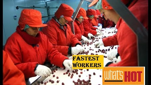 Fastest Workers Crazy Workers.. PEOPLE are AWESOME!