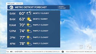 Metro Detroit Forecast: Getting warmer every day