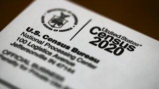 Census data shows changes in Michigan Black population