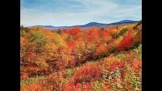 WANDERLUST! Best hikes to see fall colors in Arizona - ABC15 Digital