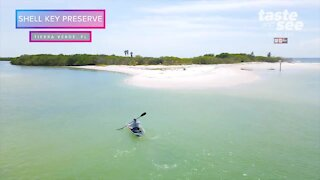 Visit Shell Key Preserve in crystal clear kayaks   Taste and See Tampa Bay