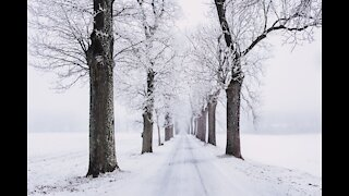 Snowfall With Relaxing Ambient Music