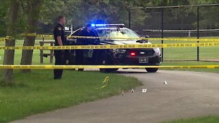 Bystanders in Cleveland Heights shoot at vehicle to stop it driving 'erratically' through park
