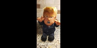 Trump Making Dolls Great Again