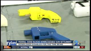 FEDERAL JUDGE BLOCKS DOWNLOADABLE GUNS