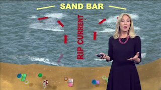 How do rip currents work?