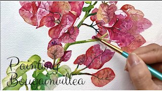 Painting Bougainvillea Flower in watercolor | Painting Flower