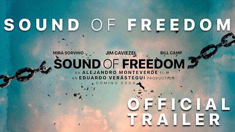 Tráiler 🎥 Una película basada en hechos reales sobre el horror del tráfico de niños