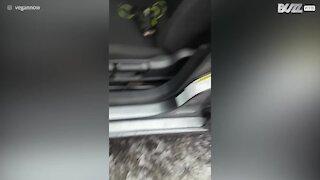Les vitres de sa voiture sont pétrifiées dans la glace!