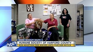 Good morning from Brooklyn & The Humane Society of Harford County!