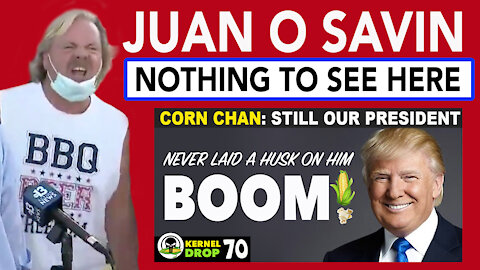Juan O Savin on Election - NOTHING TO SEE HERE