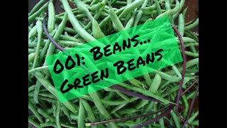 001: Beans... Green Beans