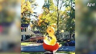 Pumpkin Destruction