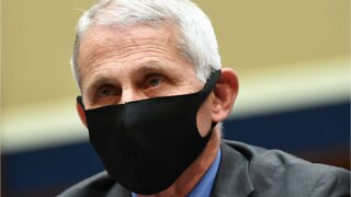 Fauci Says 'Real Normality' Could Be Only A Year Away