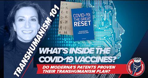 EXPOSED: Moderna's Patents Prove Their Transhumanism Plan with Biotech Karen Kingston