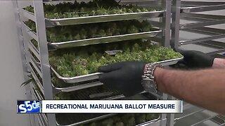 New group proposing recreational marijuana files paperwork for November 2020 ballot