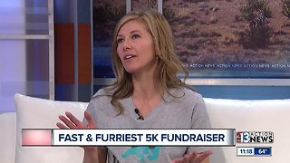 Animal Foundation Fast and Furriest
