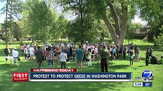 Group gathers in Washington Park to protest Denver's controversial Canada geese roundup