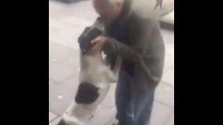 El increíble reencuentro de un anciano con su perro perdido hace 3 años emociona a toda la red
