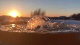 Frosne bobler ser ut som snøglober!