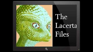 """Interview With Reptilian Female """"Lacerta"""""""