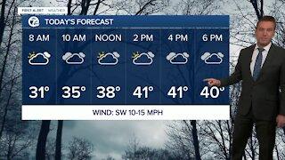Metro Detroit Forecast: Mild January weather