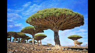 Most Truly Amazing Incredibly Surreal Places on Earth