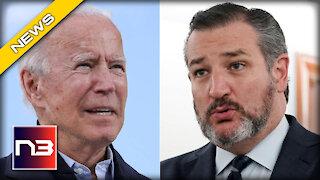 Ted Cruz UNLEASHES on Biden's Radical Immigration Plan