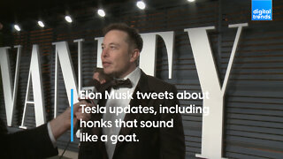 Elon Musk tweets about Tesla updates, including honks that sound like a goat.