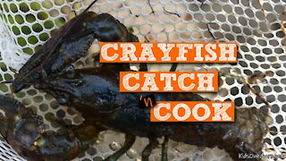 S1:E12 Crayfish Catch 'n Cook | Kids Outdoors