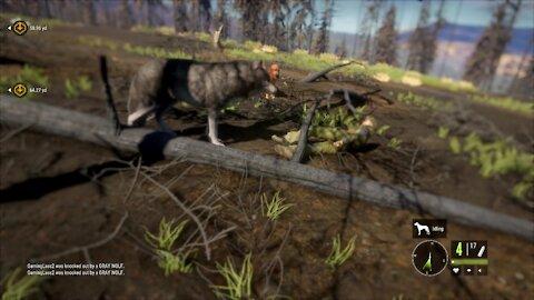 the Hunter: Call of the Wild - REVENGE!