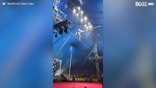 Cirque: la chute spectaculaire d'un funambule