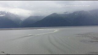 Extreme SUP Surfing A Summer Boretide Up Turnagain Arm