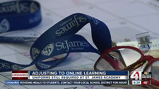 Adjusting to online learning