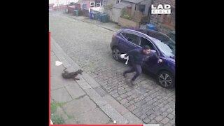 CCTV misses nothing!