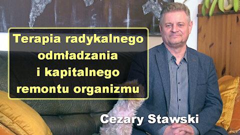 Terapia radykalnego odmładzania i kapitalnego remontu organizmu - Cezary Stawski