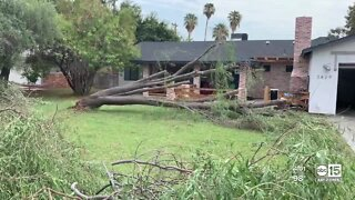 Storms cause damage across the Valley