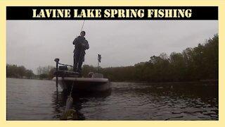 Lavine Lake Michigan Spring Fishing
