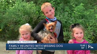 Family reunited with dog after weeks of uncertainty