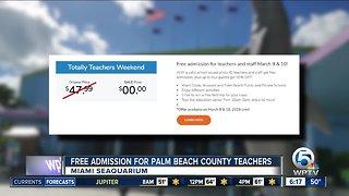 Miami Seaquarium offering free admission to South Florida teachers this weekend