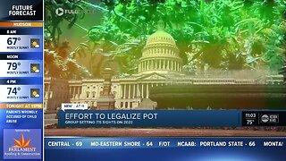 Recreational marijuana won't make 2020 Florida ballot