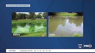 Combating algae in Southwest Florida