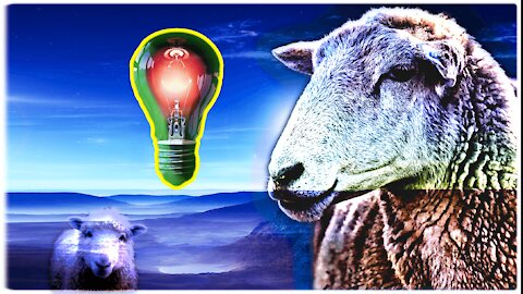 Critical Thinking 101 - Leaving The Herd