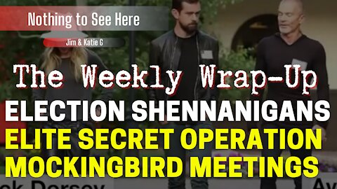 Nothing to See Here - Ep# 6 - Election Shenanigans and Elite Secret Operation Mockingbird Meetings