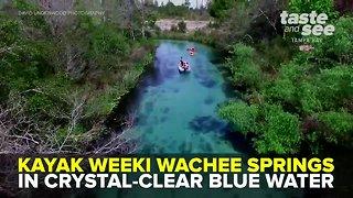 Weeki Wachee Springs: Kayaking Crystal-Clear Blue Water   Taste and See Tampa Bay