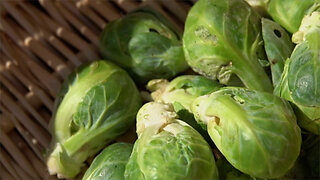 Not Liking Vegetables Could Be Genetic, Says Study