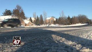 Gov. Whitmer supports forgiving snow days